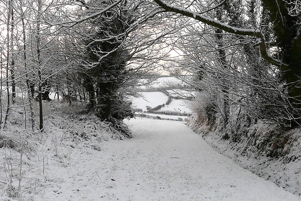 Winter Time in Cornwall